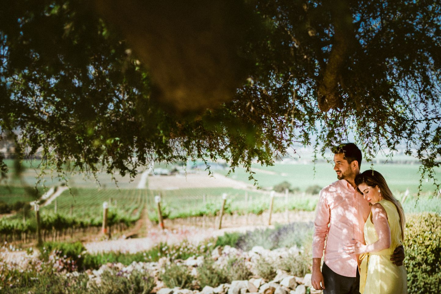 Viña casas del bosque - chile wineyard photoshot