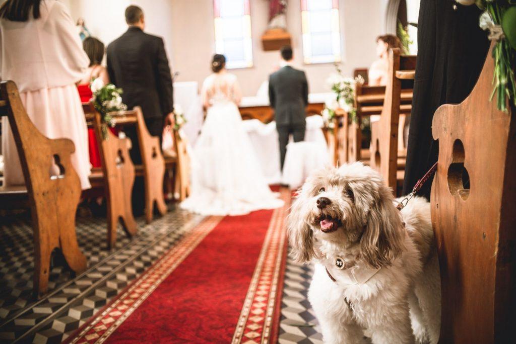 Andrea y Carlos, Fotos de boda en la florida y Providencia 27